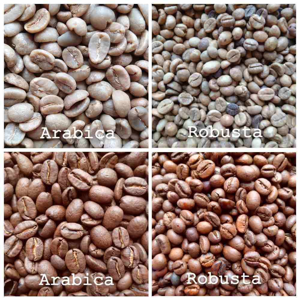 Kaan Koffie - arabicabonen - robustabonen